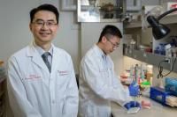 Dr. Don Sin and his research team receives prestigious grant towards revolutionizing COPD and asthma treatment